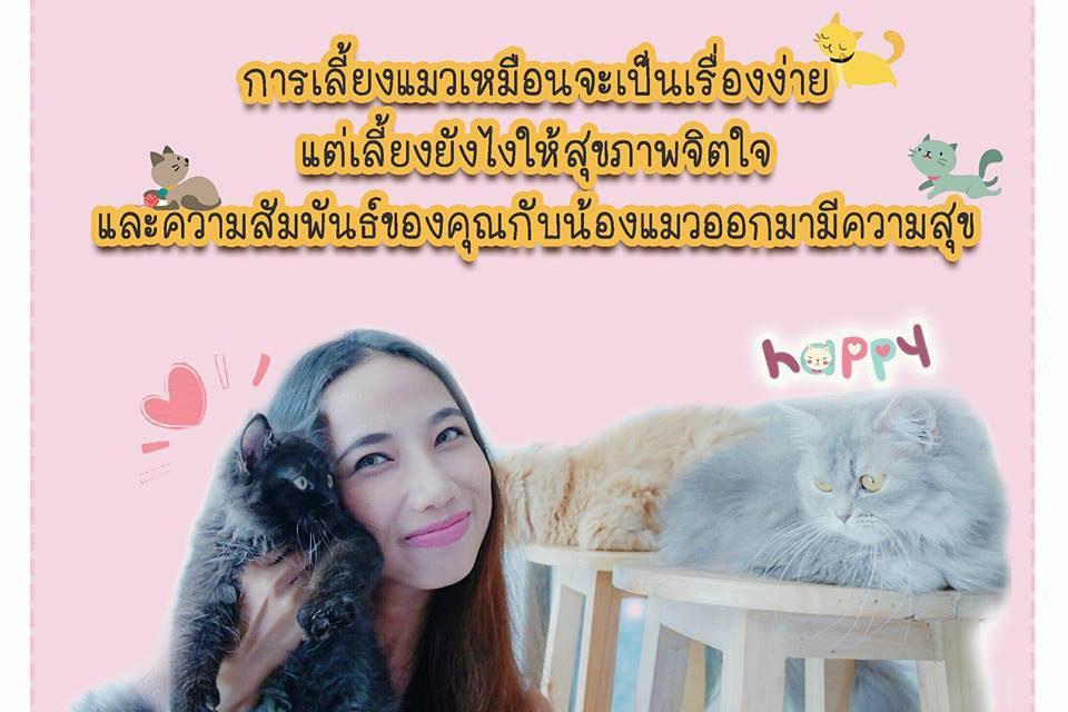 https://www.catsmelodichotel.com/wp-content/uploads/2018/01/Cats-melodic-hotel-4-960x640.jpg