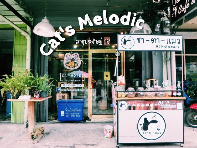 https://www.catsmelodichotel.com/wp-content/uploads/2019/10/Cats-melodic-hotel-8.jpg